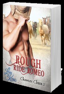 RoughRideRomeo-hardcover